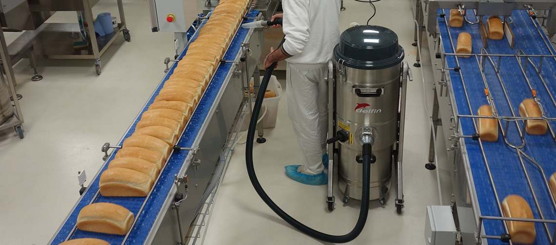 Vacuum solutions for food production | Delfin